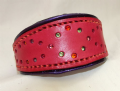 Italian Greyhound Dog Collars